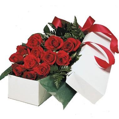 One dozen roses box