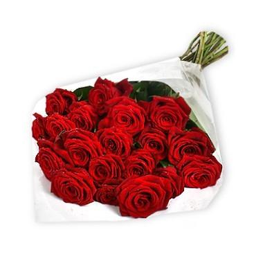 Two dozen roses bouquet