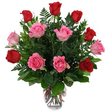 12 pink and red roses Vase included