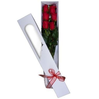 Six roses box