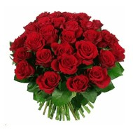 Three dozen roses bouquet