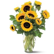 Sunflowers. Vase included
