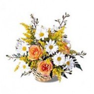 Arrangement of roses and daisies
