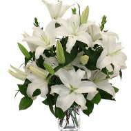 White Lilies. Vase included