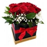 Detail in roses