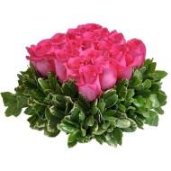 Roses square